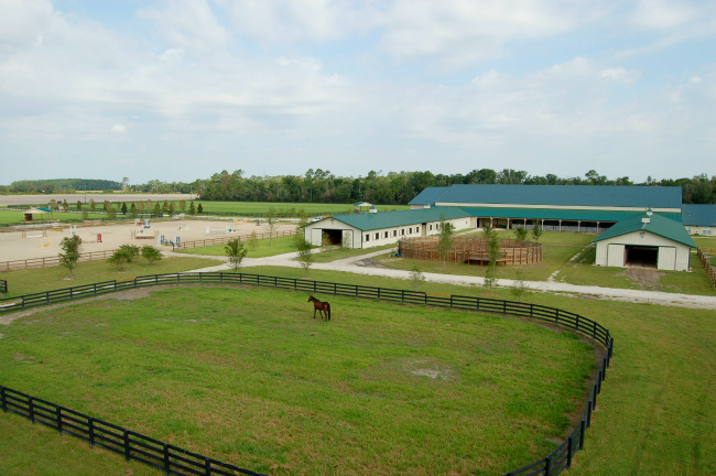 Overview of Bridlebourne Stables