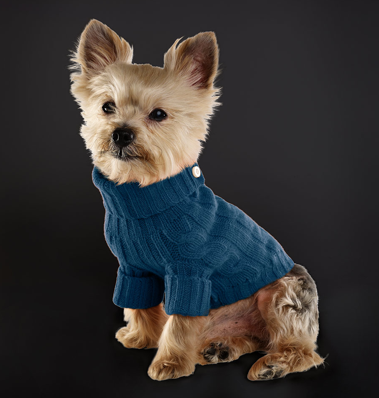 Fair-Isle-Dog-Sweater