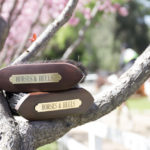 Personalized Brushes from Wellesley Equestrian